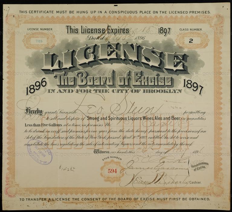 License No. 725: Leo Stein, 161 Eagle St.