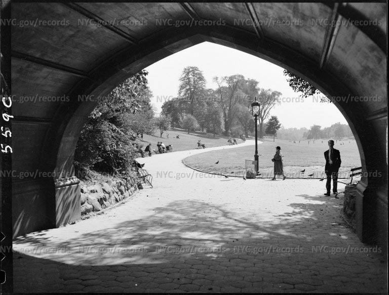 Looking south, Prospect Park, Brooklyn, New York