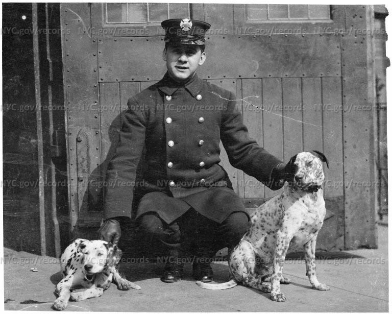 Fireman with two Dalmatians