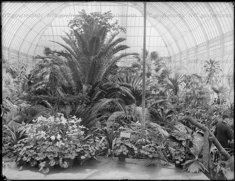 Greenhouse interior, Whitehouse west wing